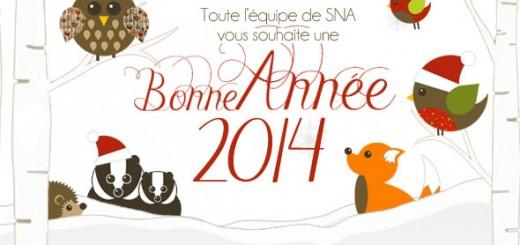 slider-voeux2014-SNA