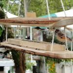 mangeoire-oiseaux-suspendue-SNA