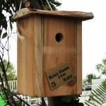 nichoir-oiseaux-trou-SNA